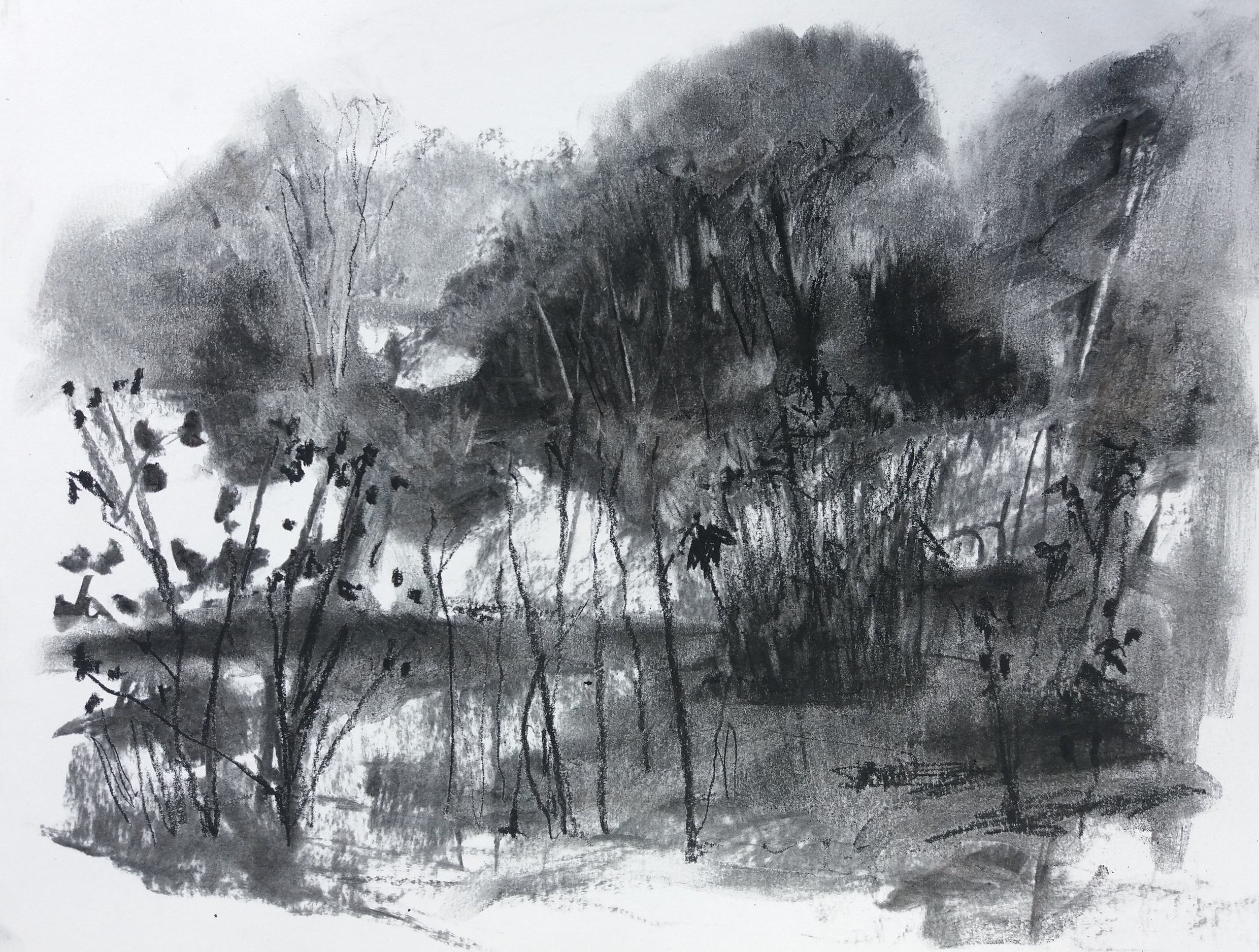 The Day with Butterflies charcoal on paper