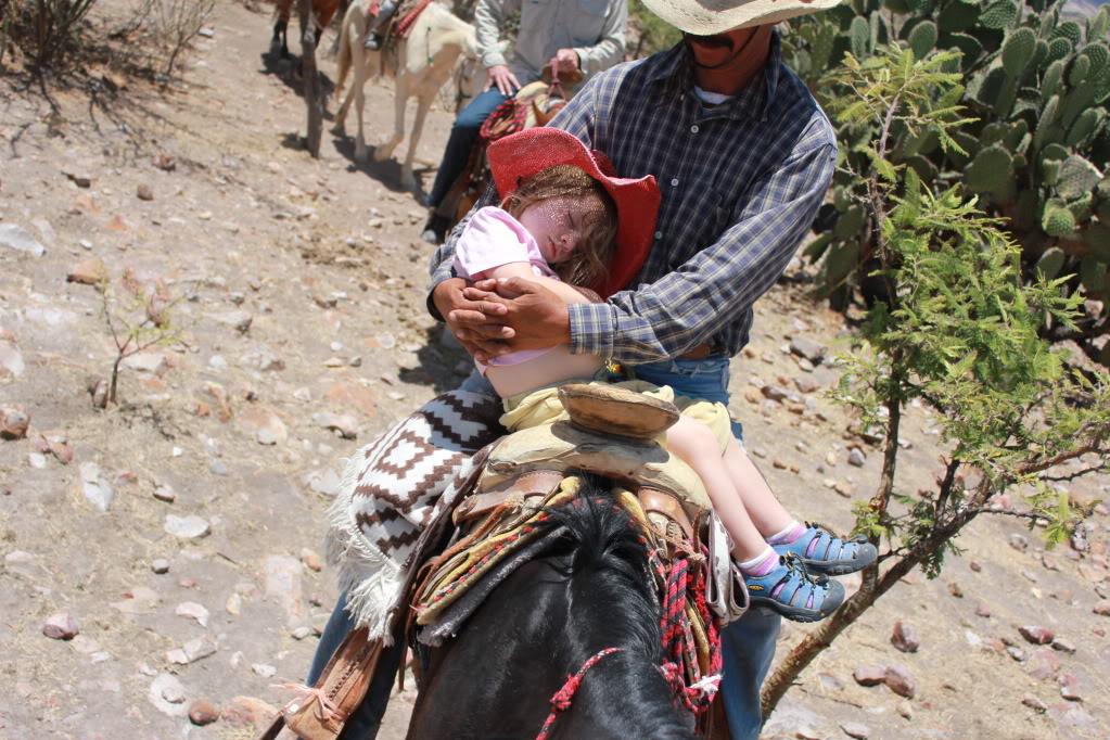 Napping on horseback