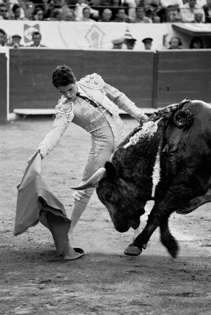 32bullfight_guapito02.jpg
