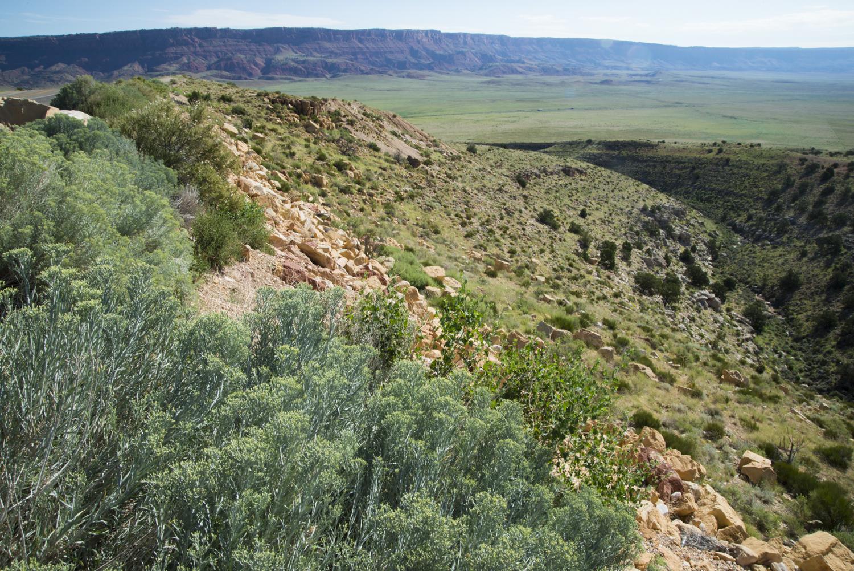 southwest-10637.jpg