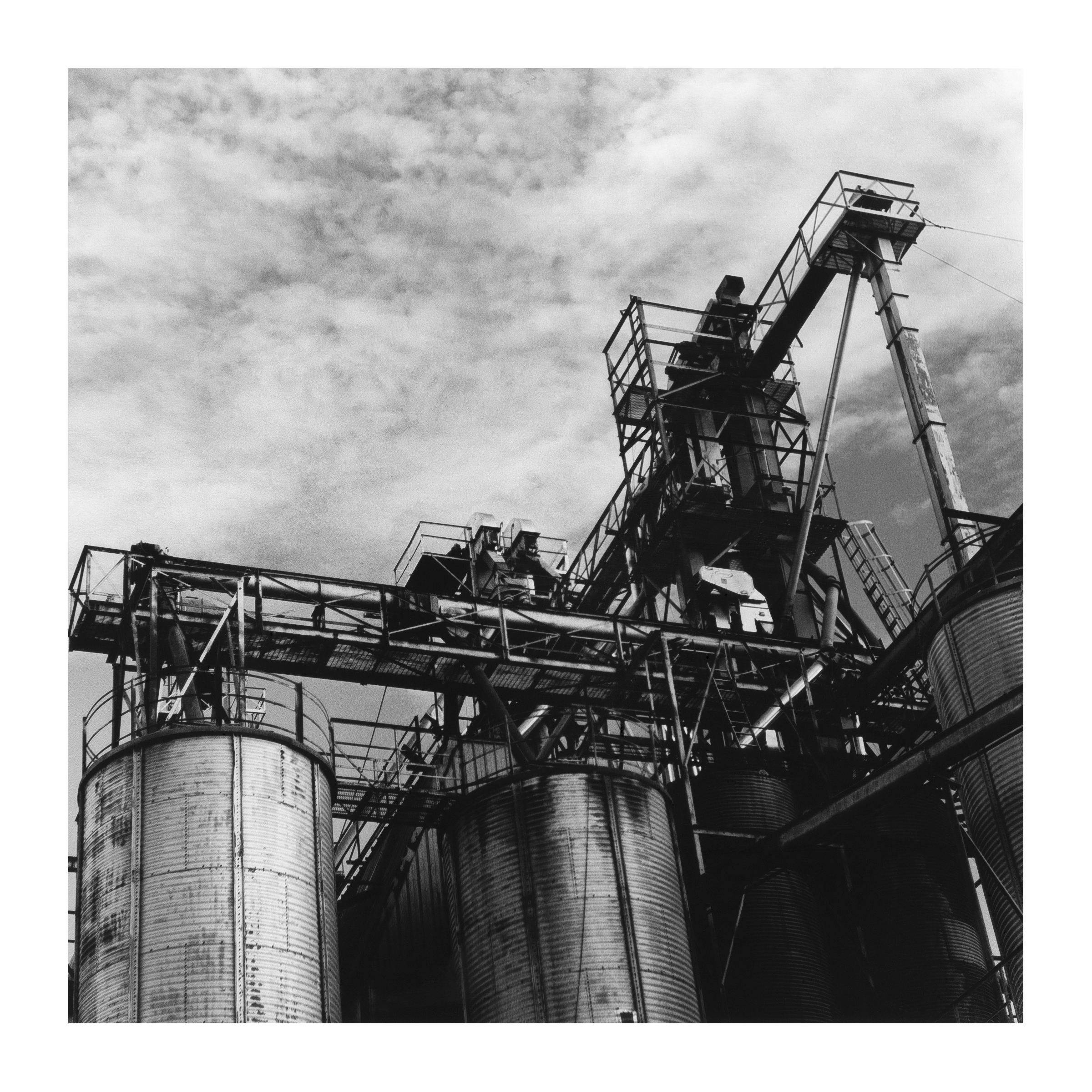 feed factory.jpg