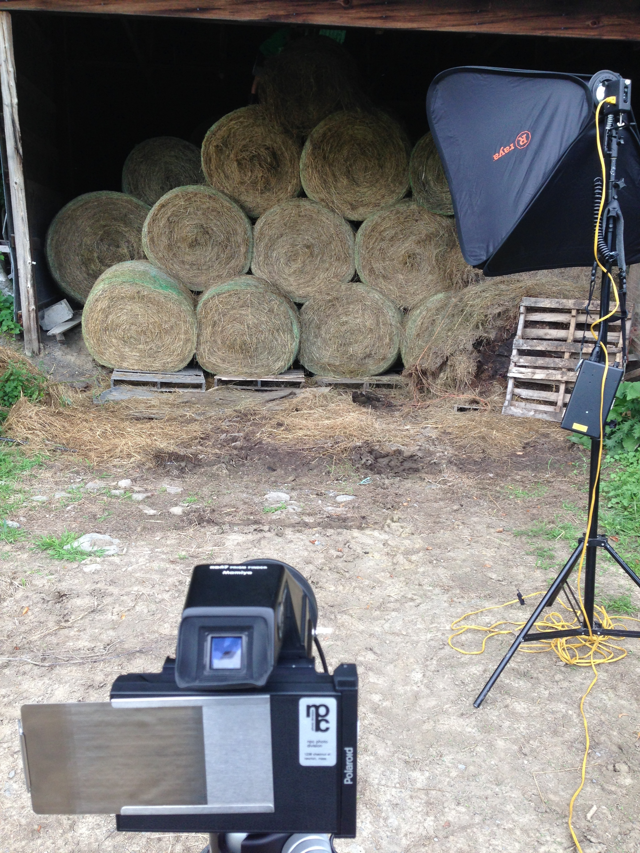 Hay Bales at Black Willow Pond Farm.
