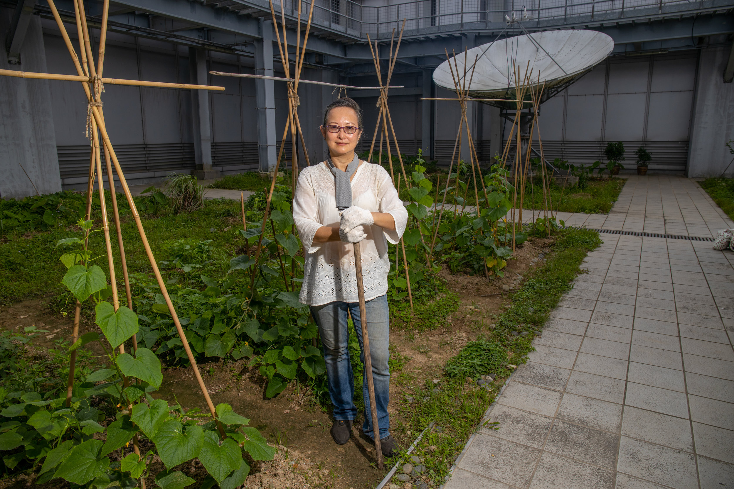 This is a Photograph of the largest urban Farm in Hong Kong. It is on top of the high rise multi-use complex, Hysan Place, a Hong Kong Landmark.