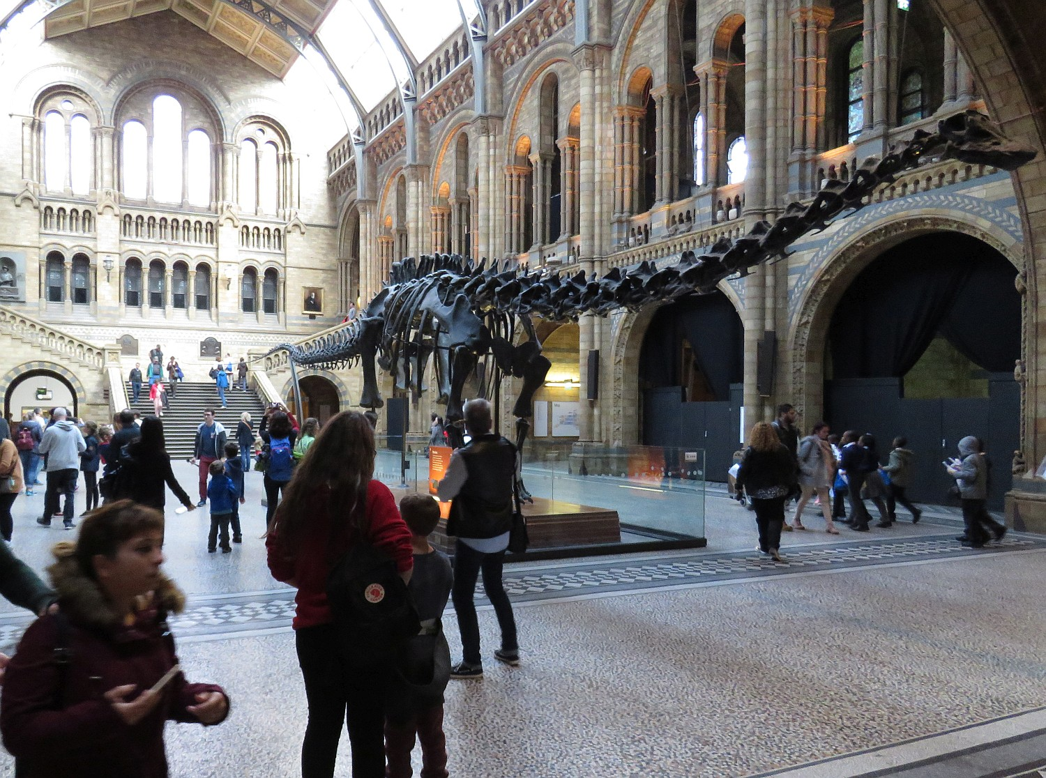 Main hall of Natural History Museum