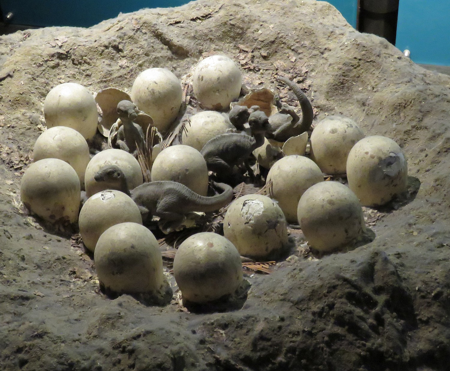 Ornithischian eggs hatching