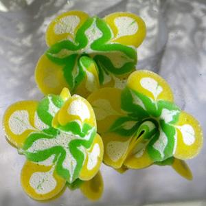 Skylar Hill Confections
