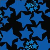 Fractal Star  $500