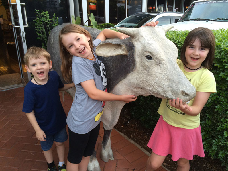 This was a cow out the front of the Pineapple Hotel where we went for dinner on Australia Day. The children are chanting something about cow patties...