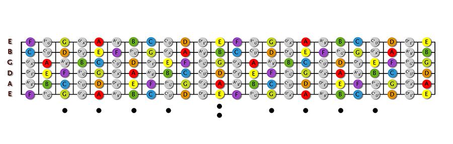 fingerboard-color-copy-2.jpg