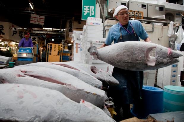 tsukiji_13-620x413.jpg