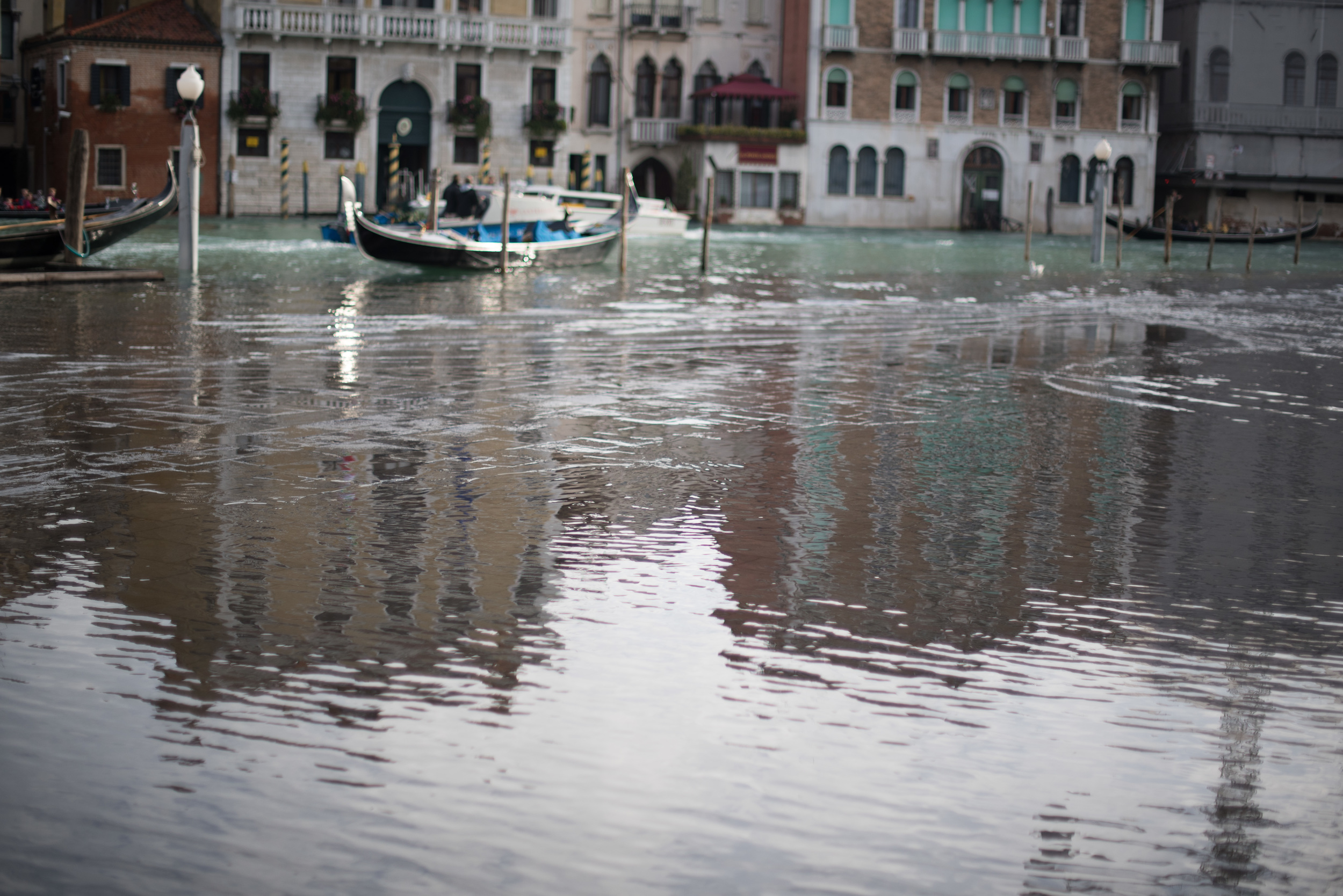 Venice 201412-15.jpg