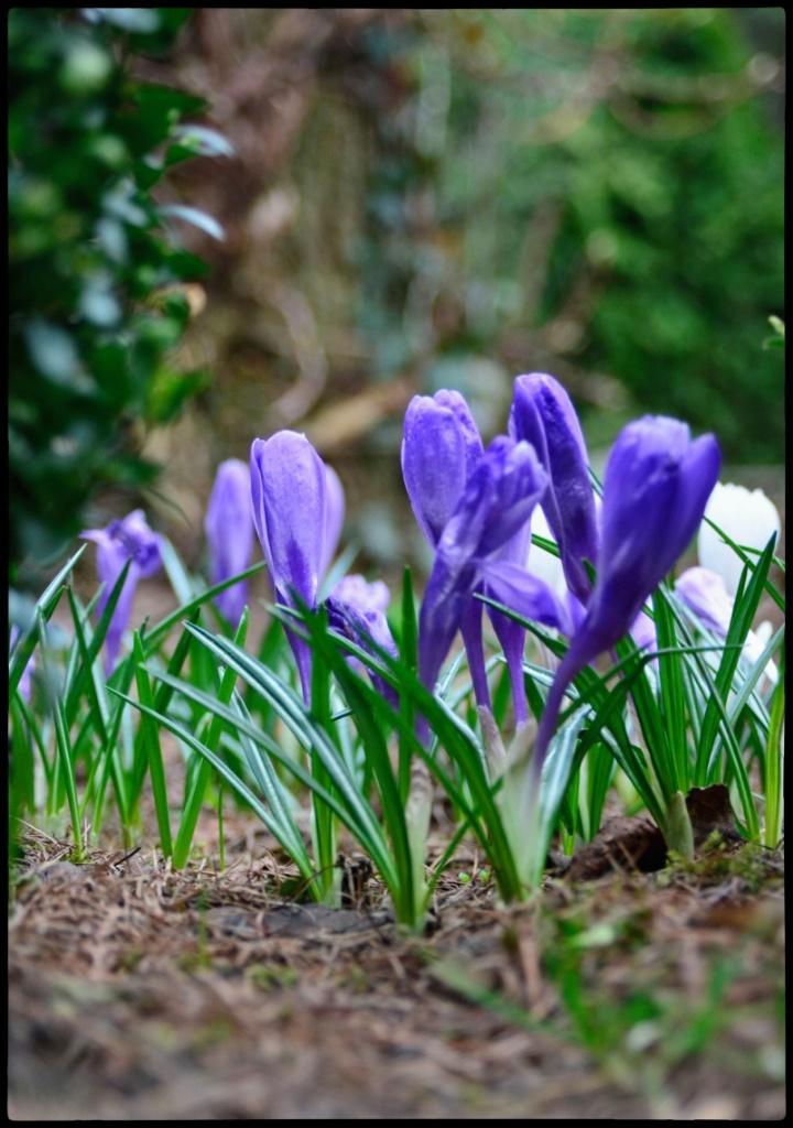 Screen Shot 2014-03-23 at 23.34.38_Snapseed.jpg