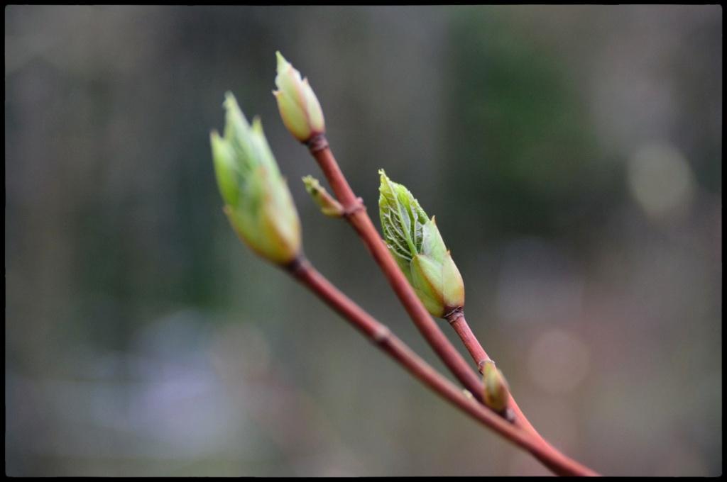 Screen Shot 2014-03-23 at 23.41.25_Snapseed.jpg