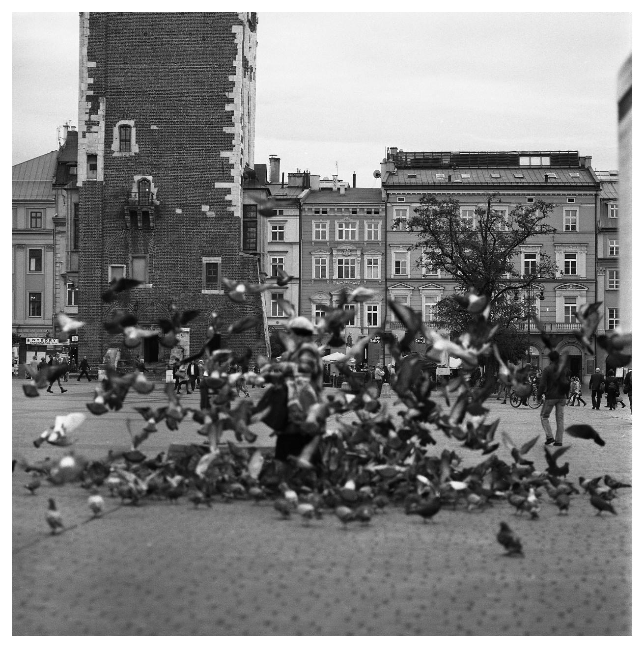 Hassel_BW_Kraków331.jpg