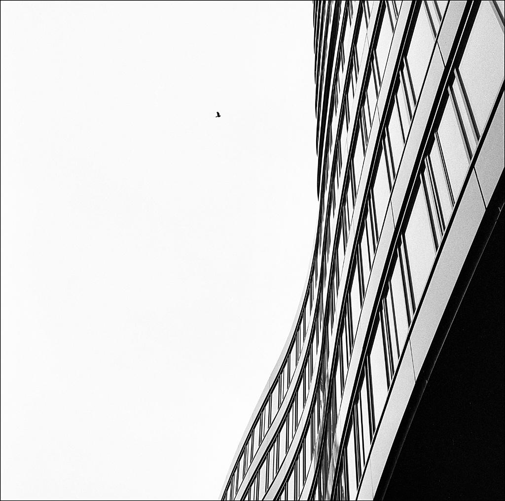 hasselblad_img264_Snapseed.jpg