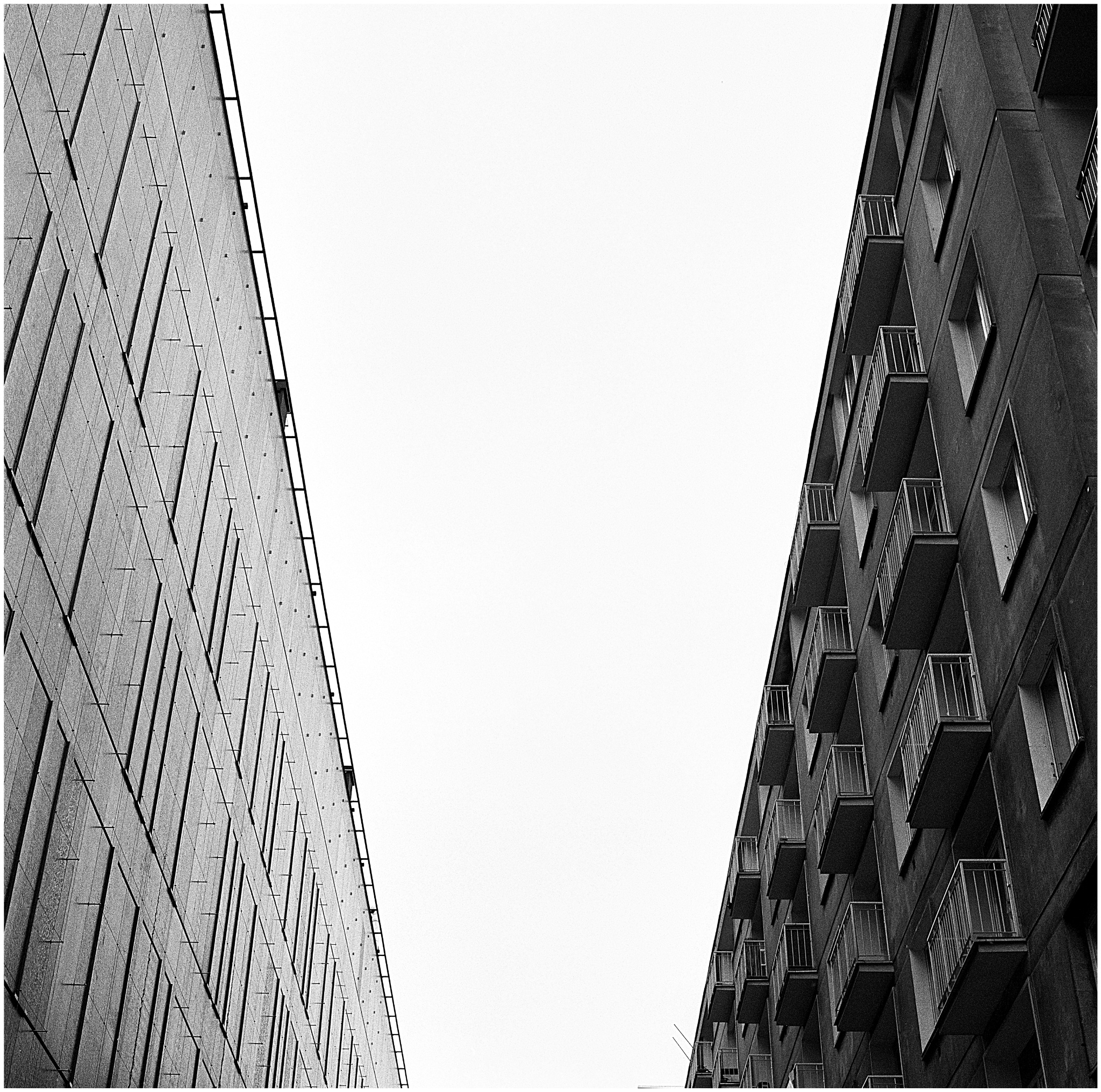 hasselblad_img262_Snapseed.jpg