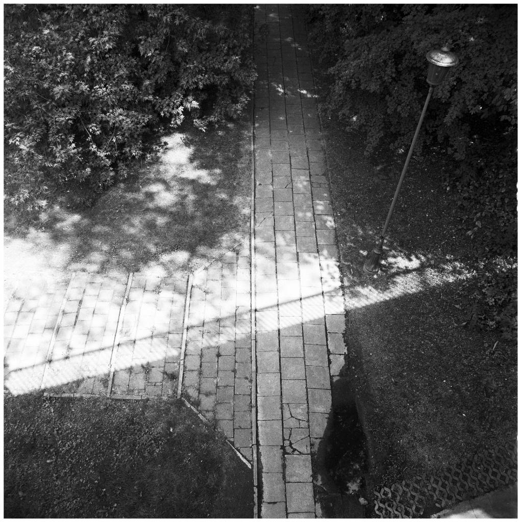 Image 1 80_Snapseed.jpg