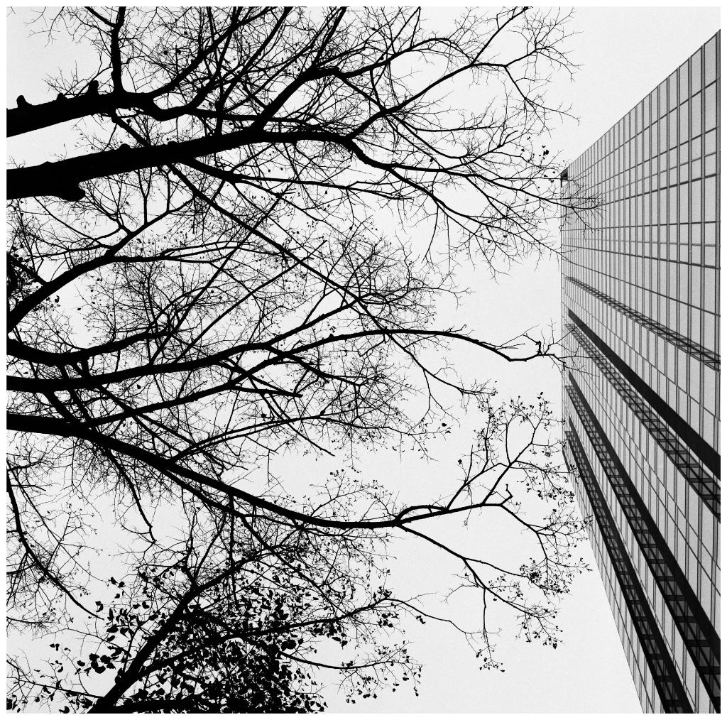 Image 1 92_Snapseed.jpg