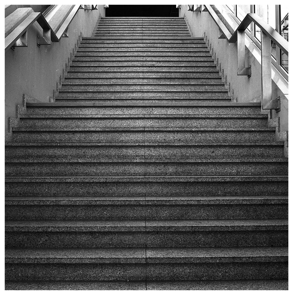 Ilford 6x63_Snapseed.jpg