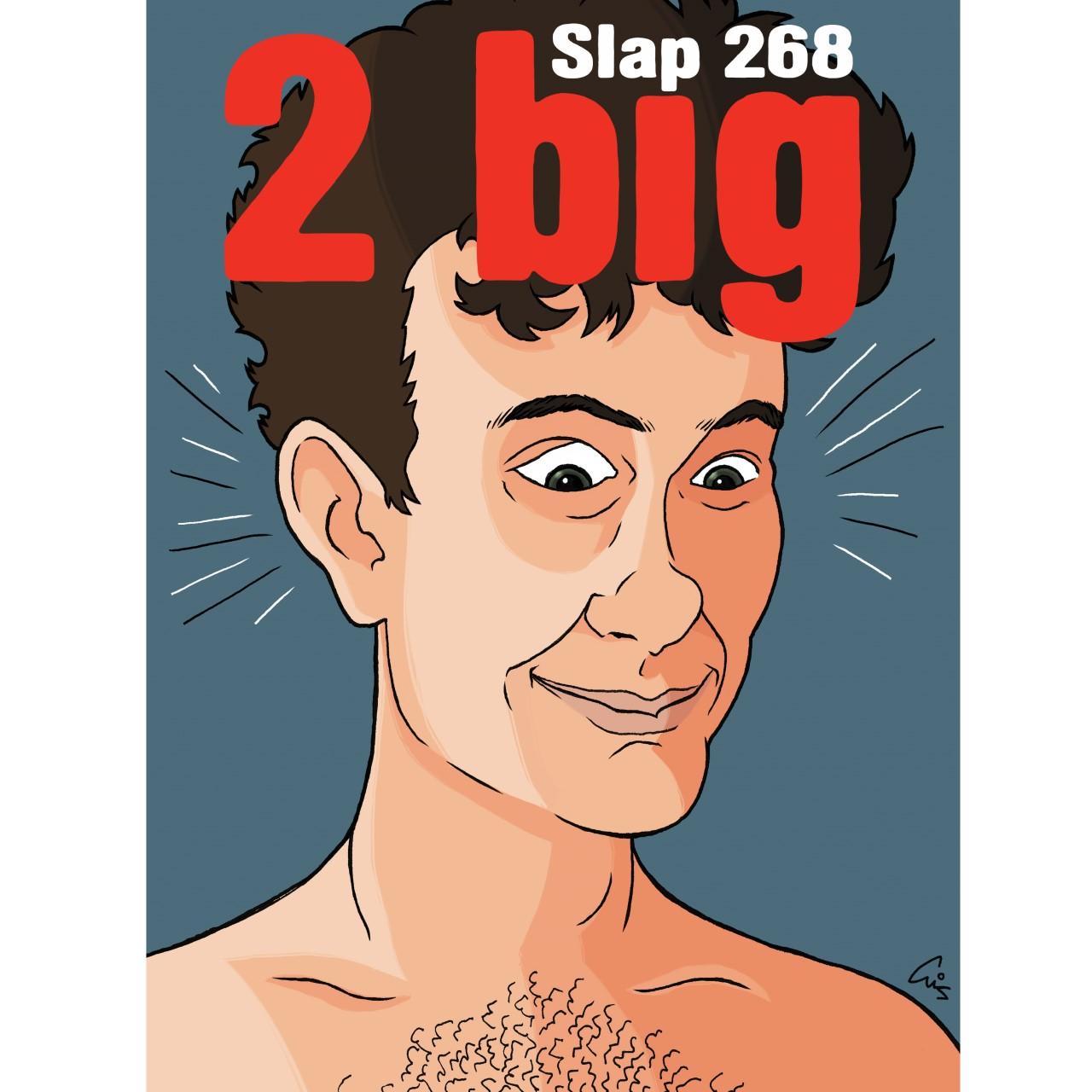 slap268.jpg