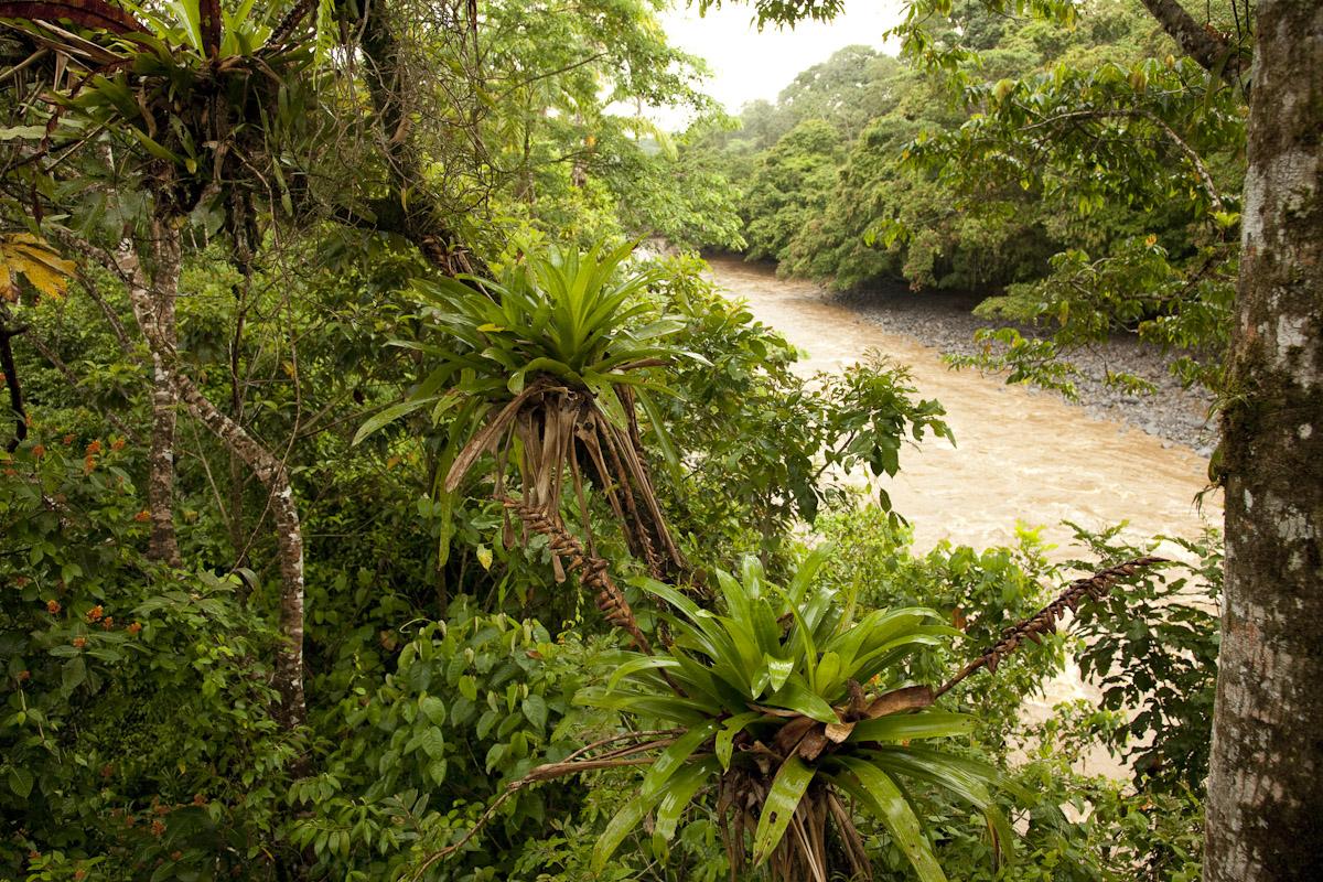 Costa Rica-15.jpg