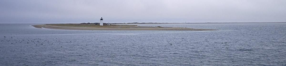 Cape Cod-9.jpg
