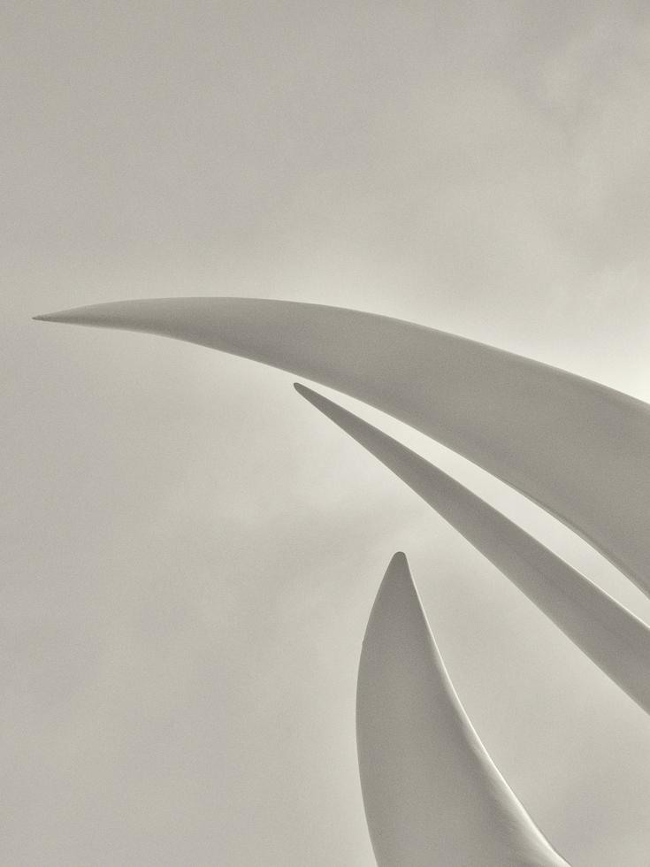 Spirit Sail-8.jpg