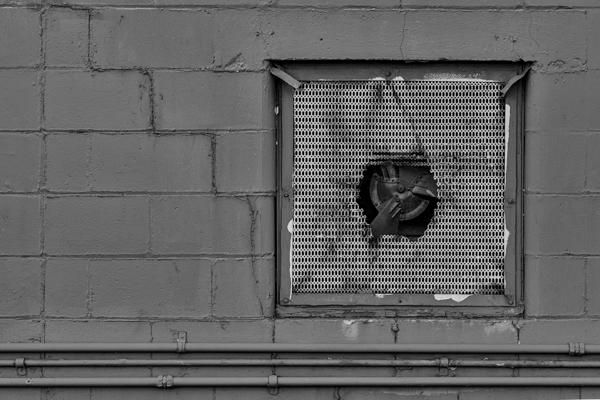 Walls-4.jpg