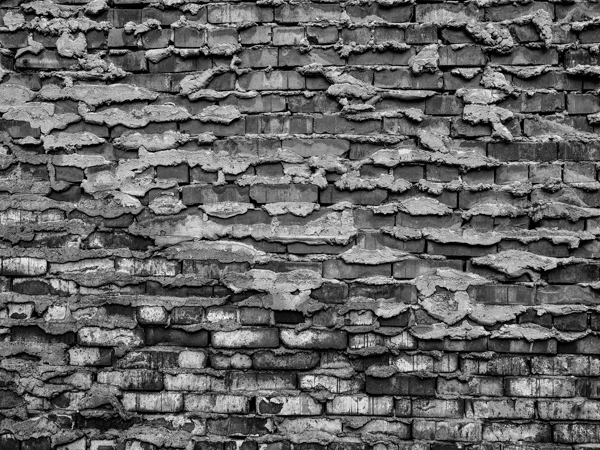 Walls-7.jpg