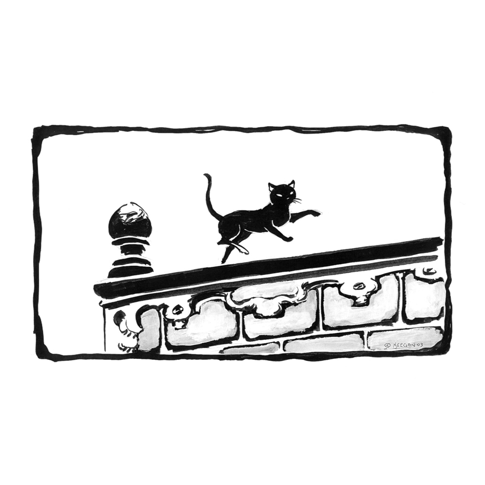Cat Dancing on a Wall