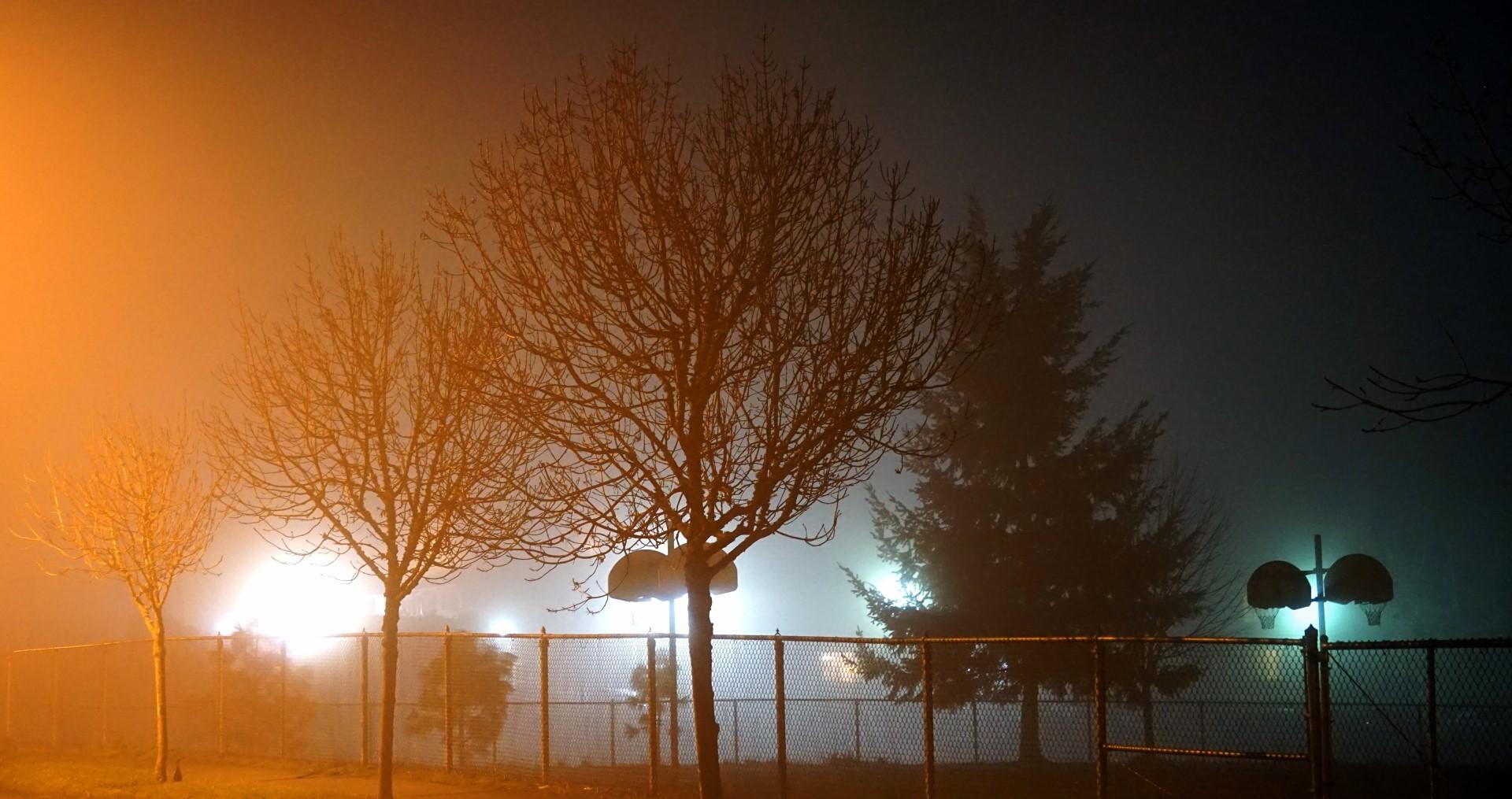 nightcourt©2015seanhemak (Large).jpg