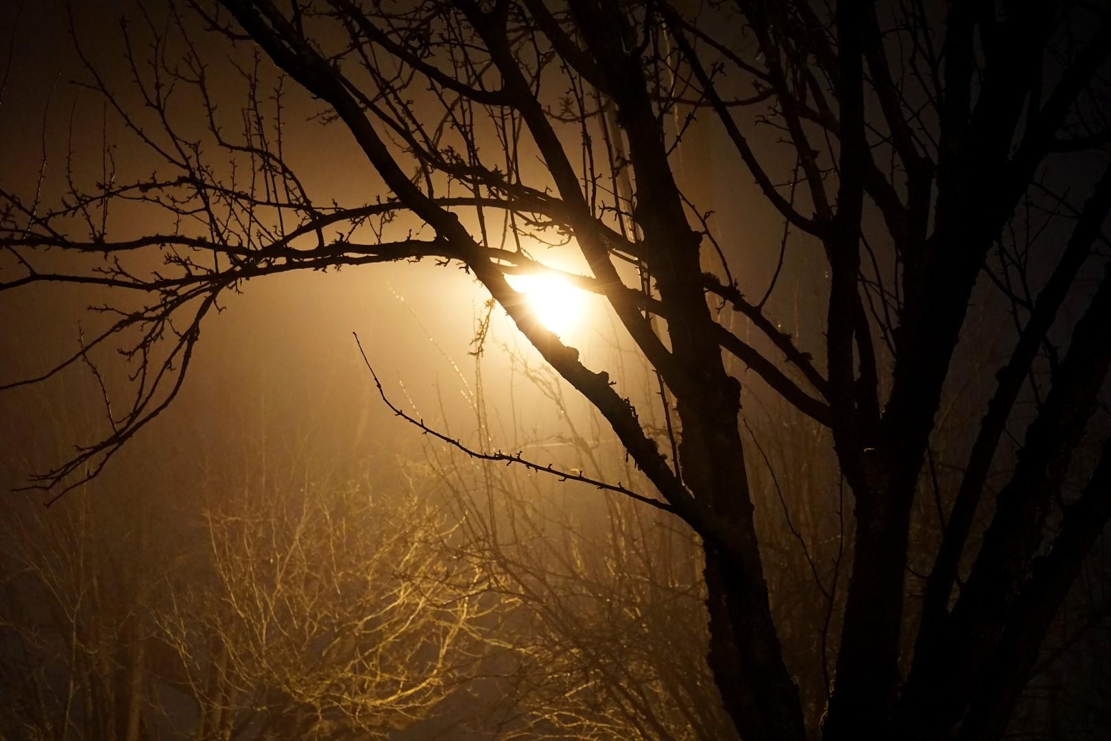 witches-glow©2015seanhemak (Large).jpg