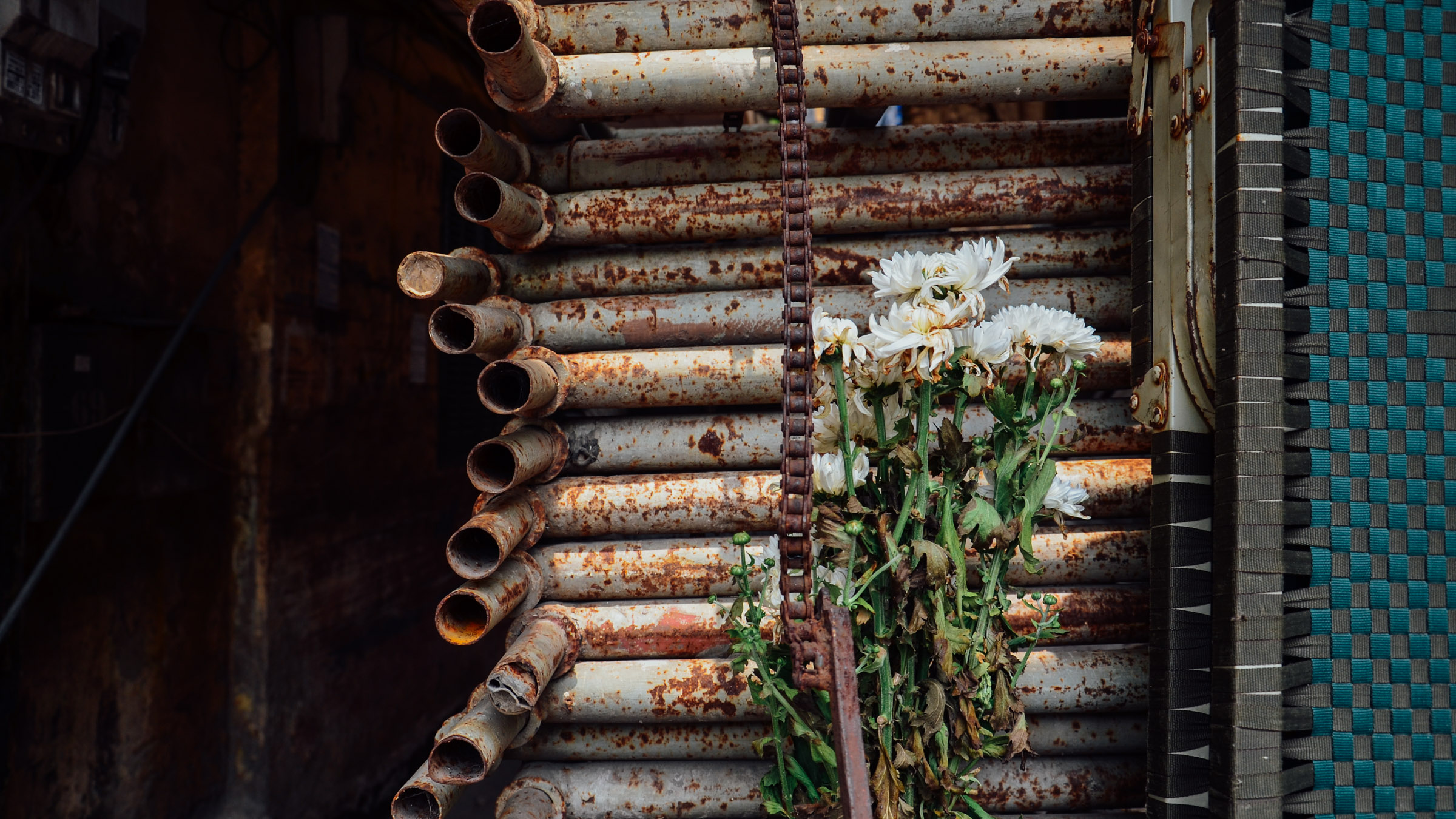 Flowers and Rust