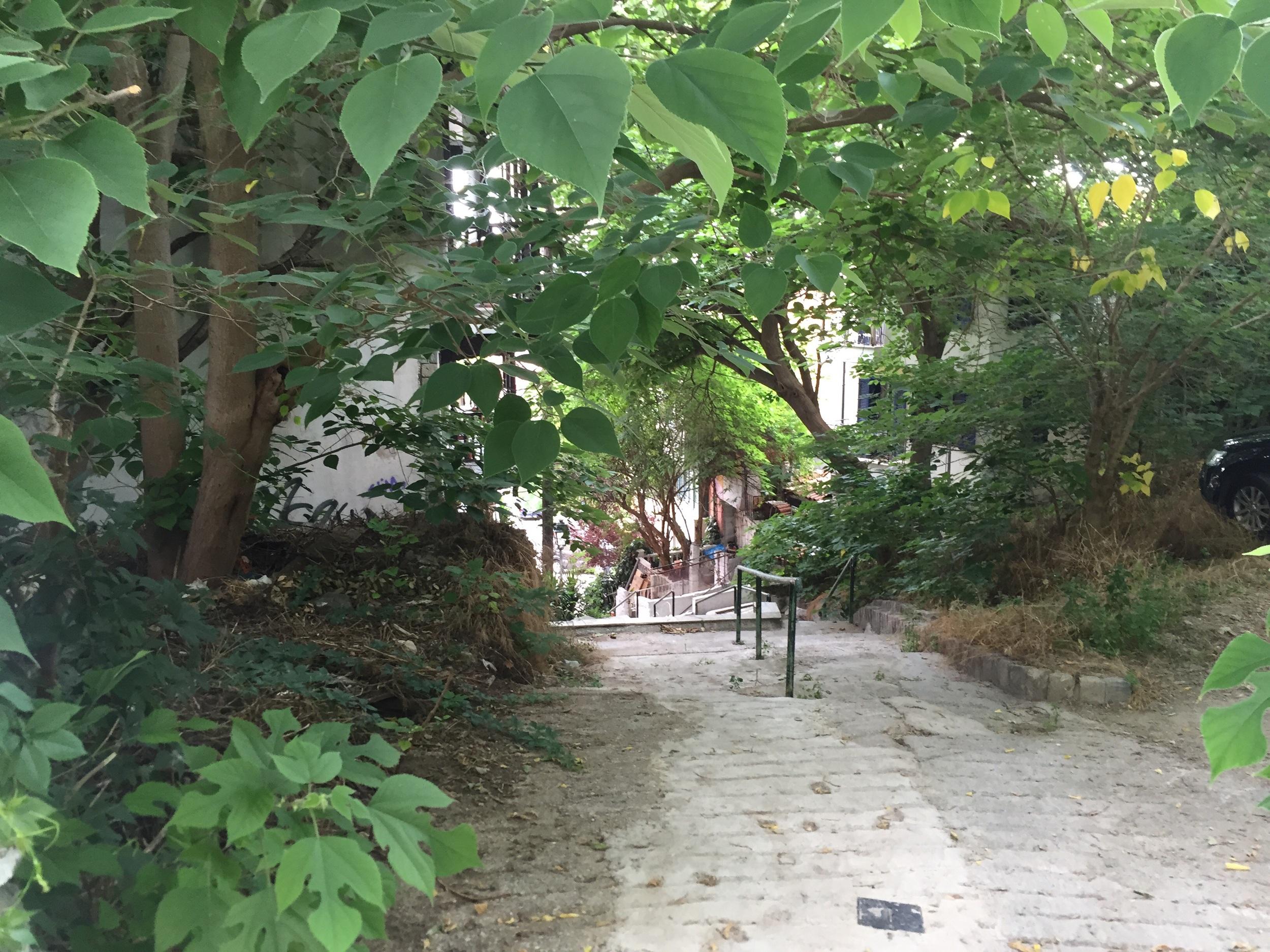 Quaint green labyrinth nearby