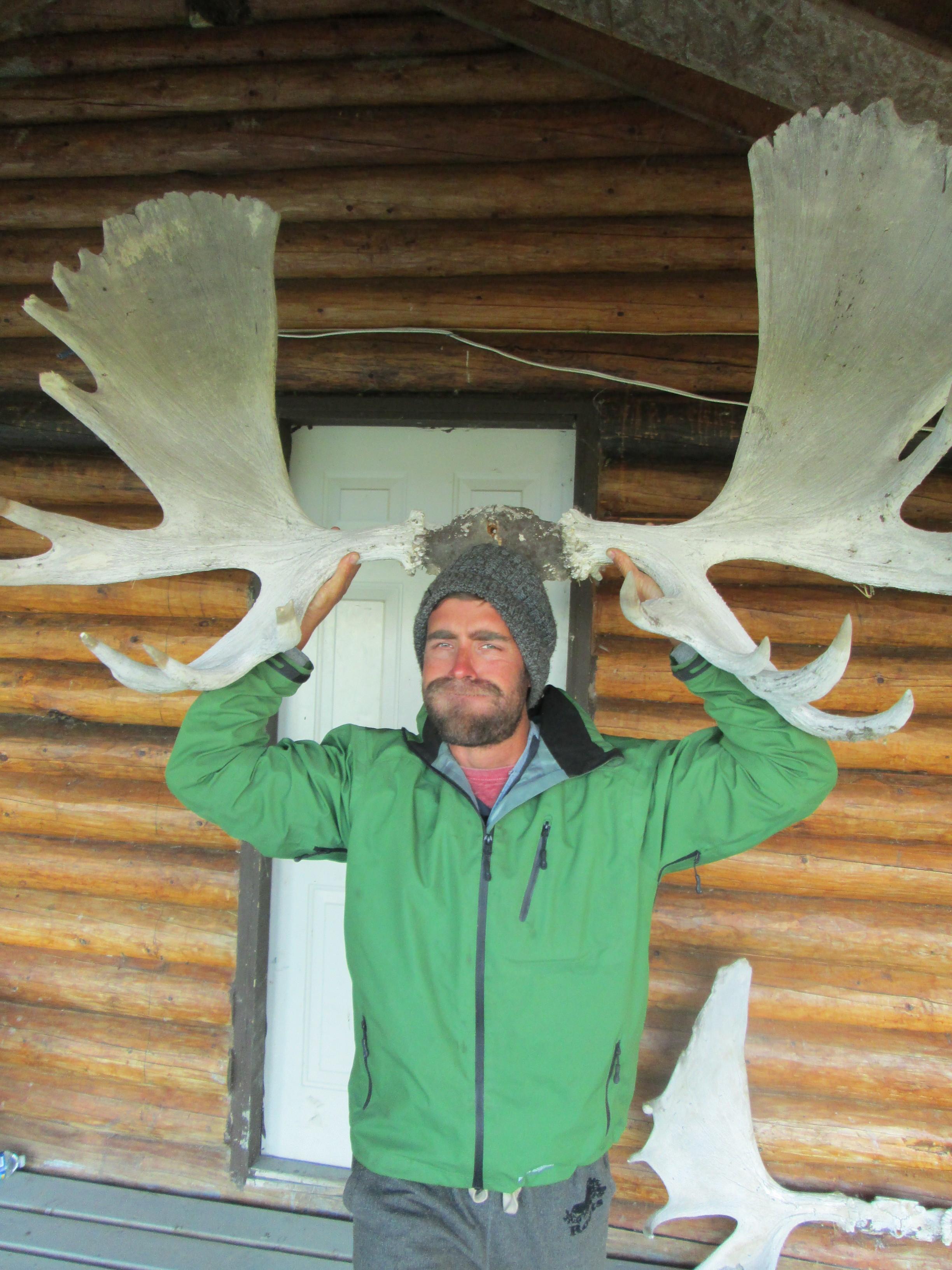 Look! A Moose!