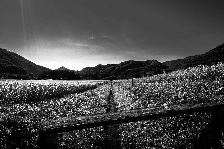 ricebridge.jpg