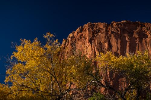 Autumn colour and dismal badlands in the Capitol Reef area.