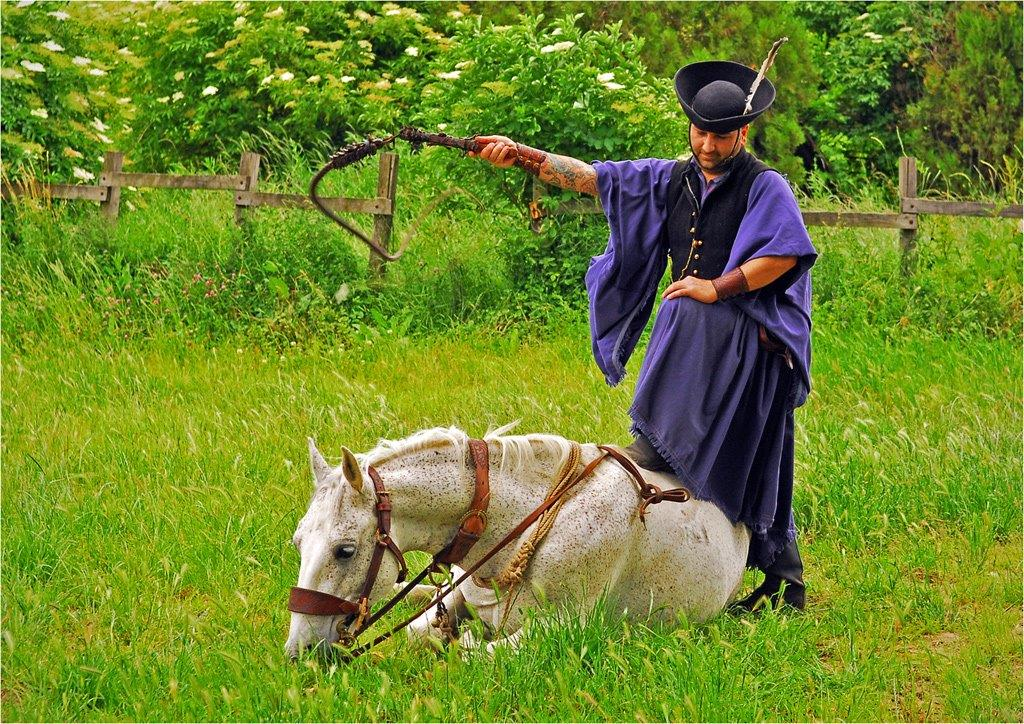 Magyar-Horseman.jpg