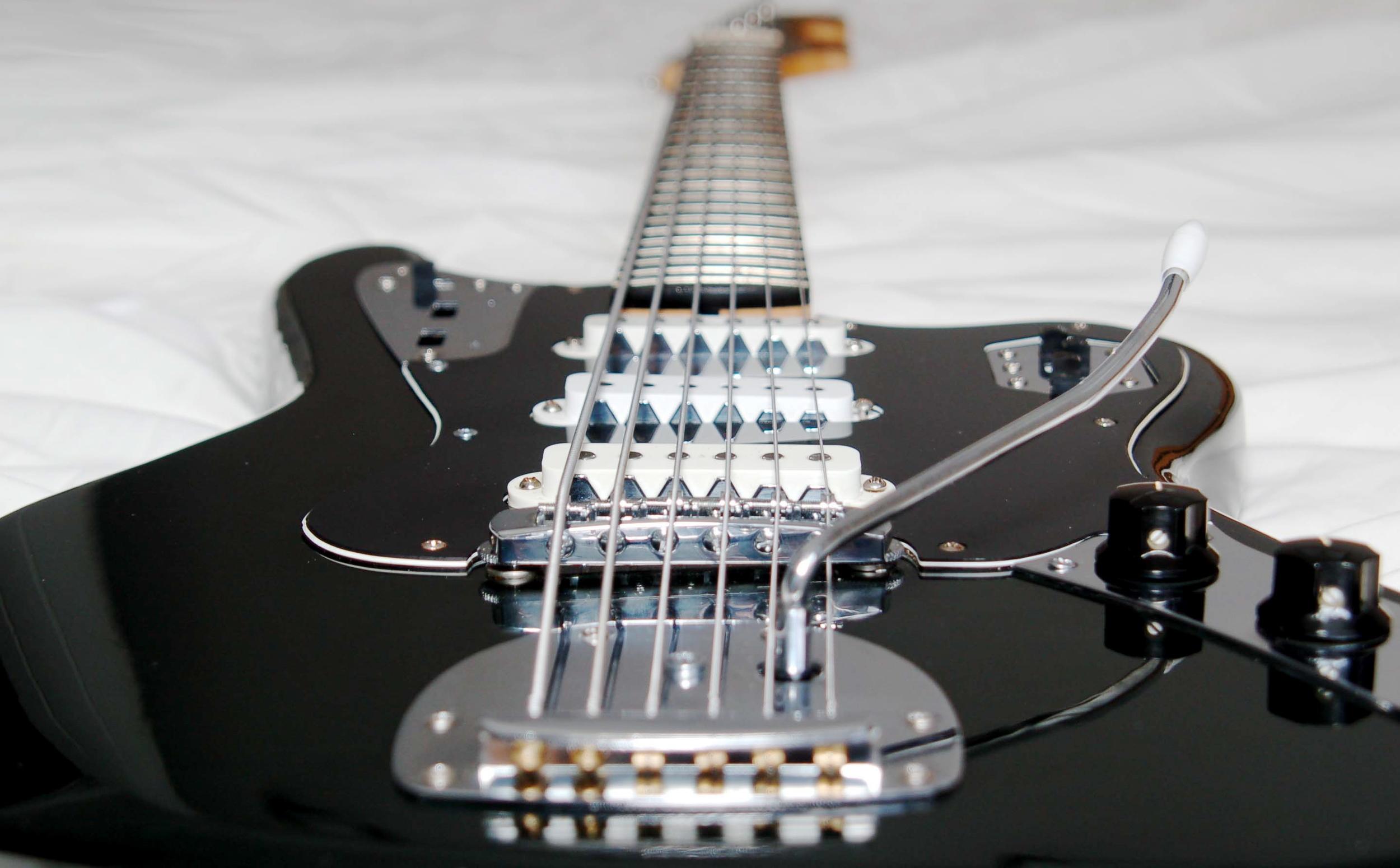 custom instrument Bassmaster-article_img03.jpg