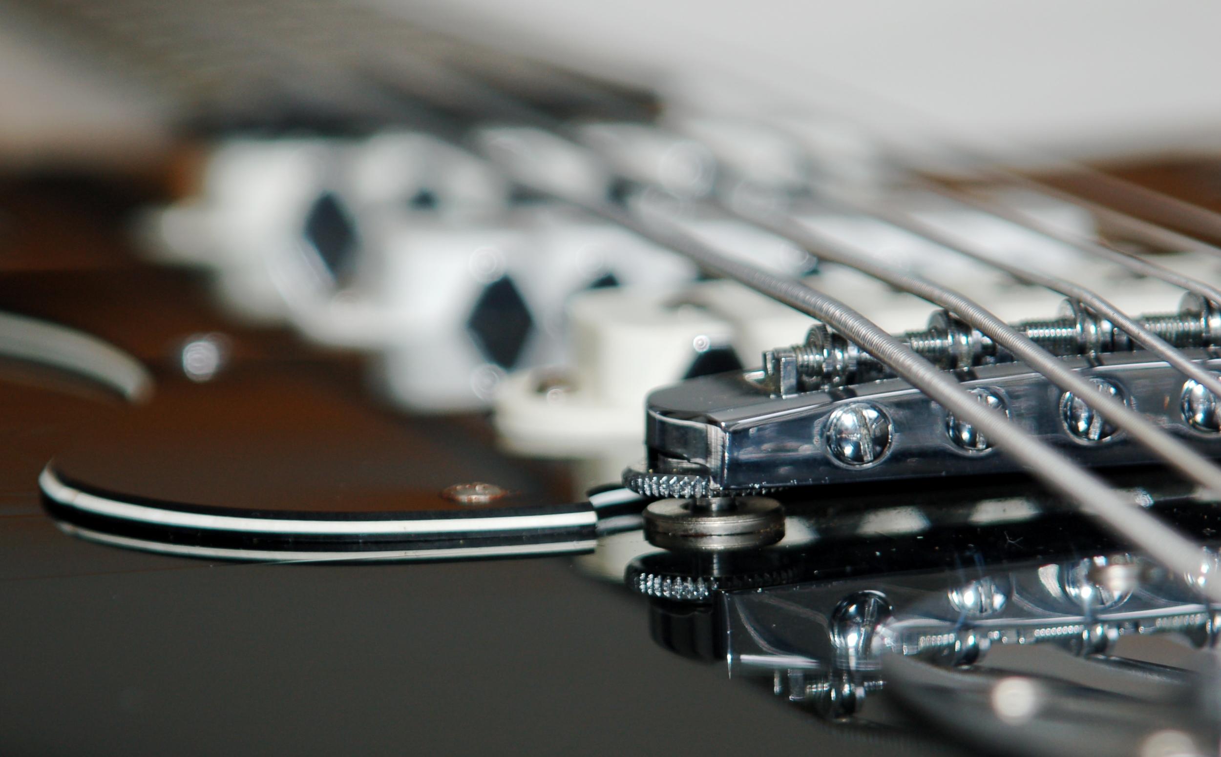 custom instrument Bassmaster-article_img02.jpg