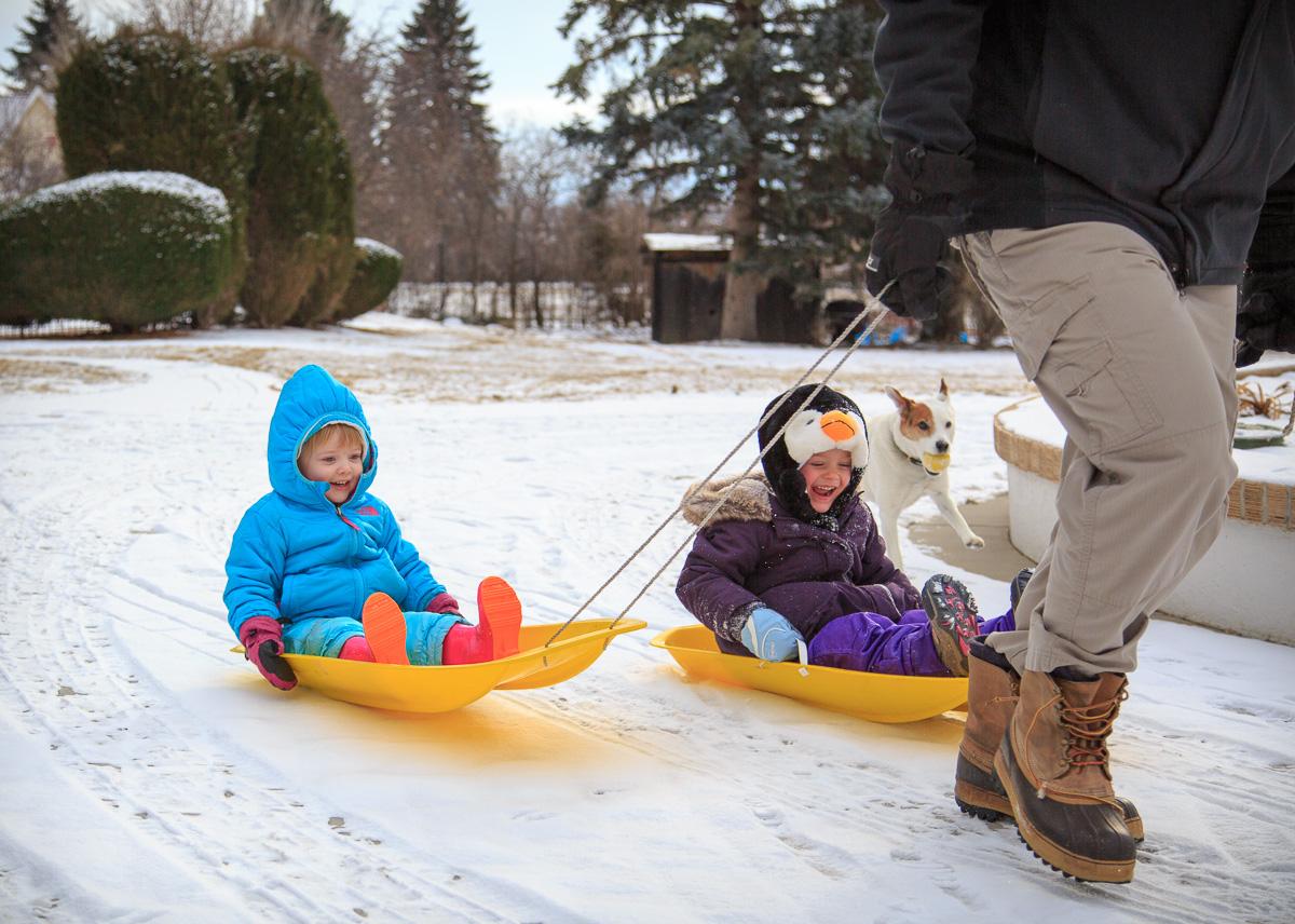 Daddy-drawn sleds!
