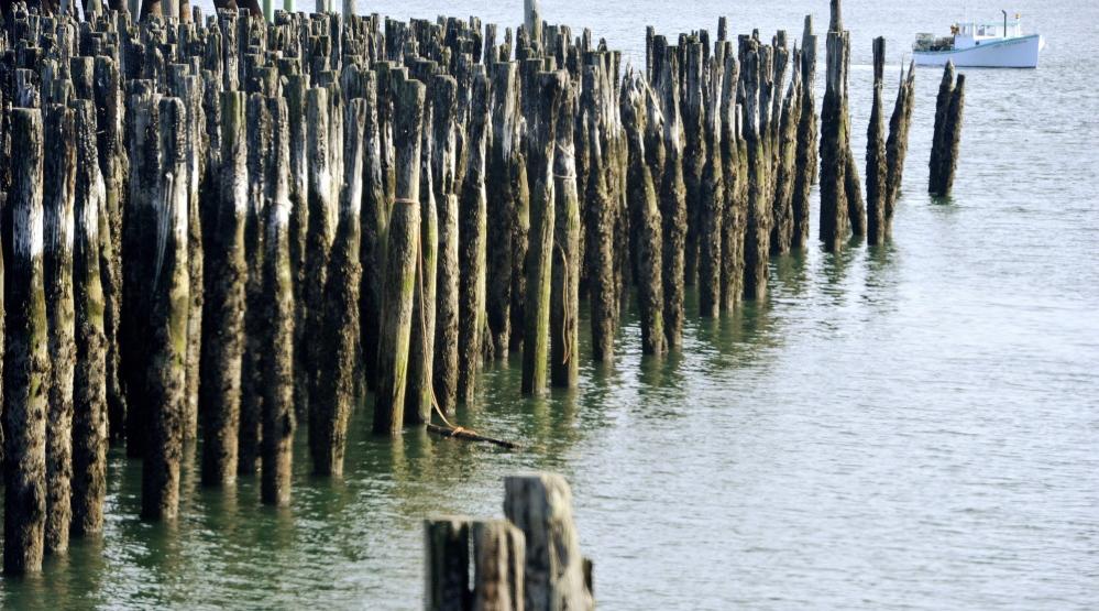 Pilings portland harbor.jpg
