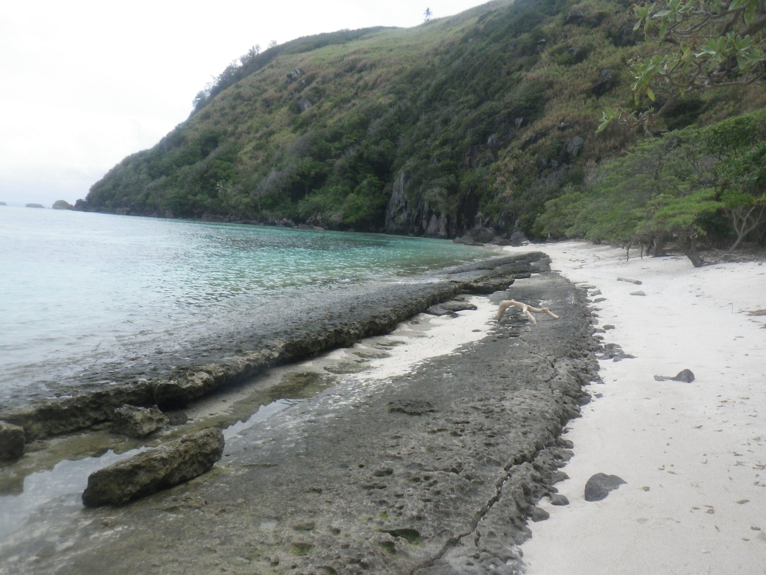 41   Weird dead beach coral, Daviquele.jpg