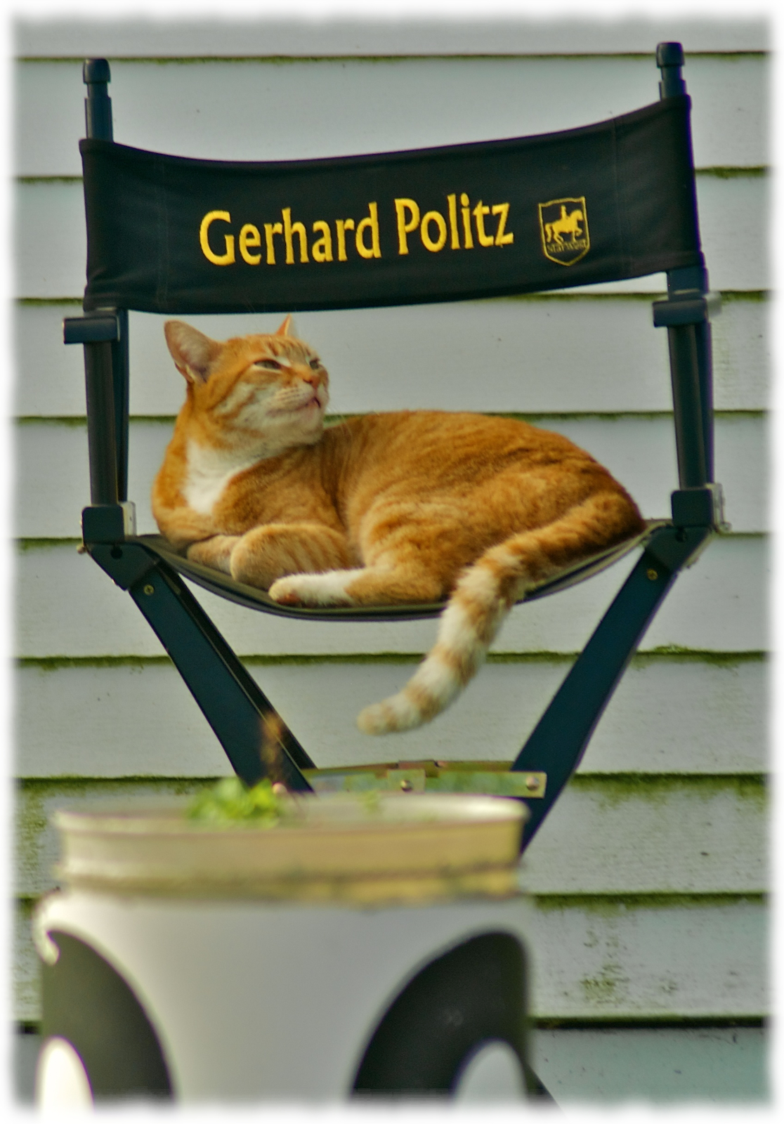 (Not Gerhard Politz)