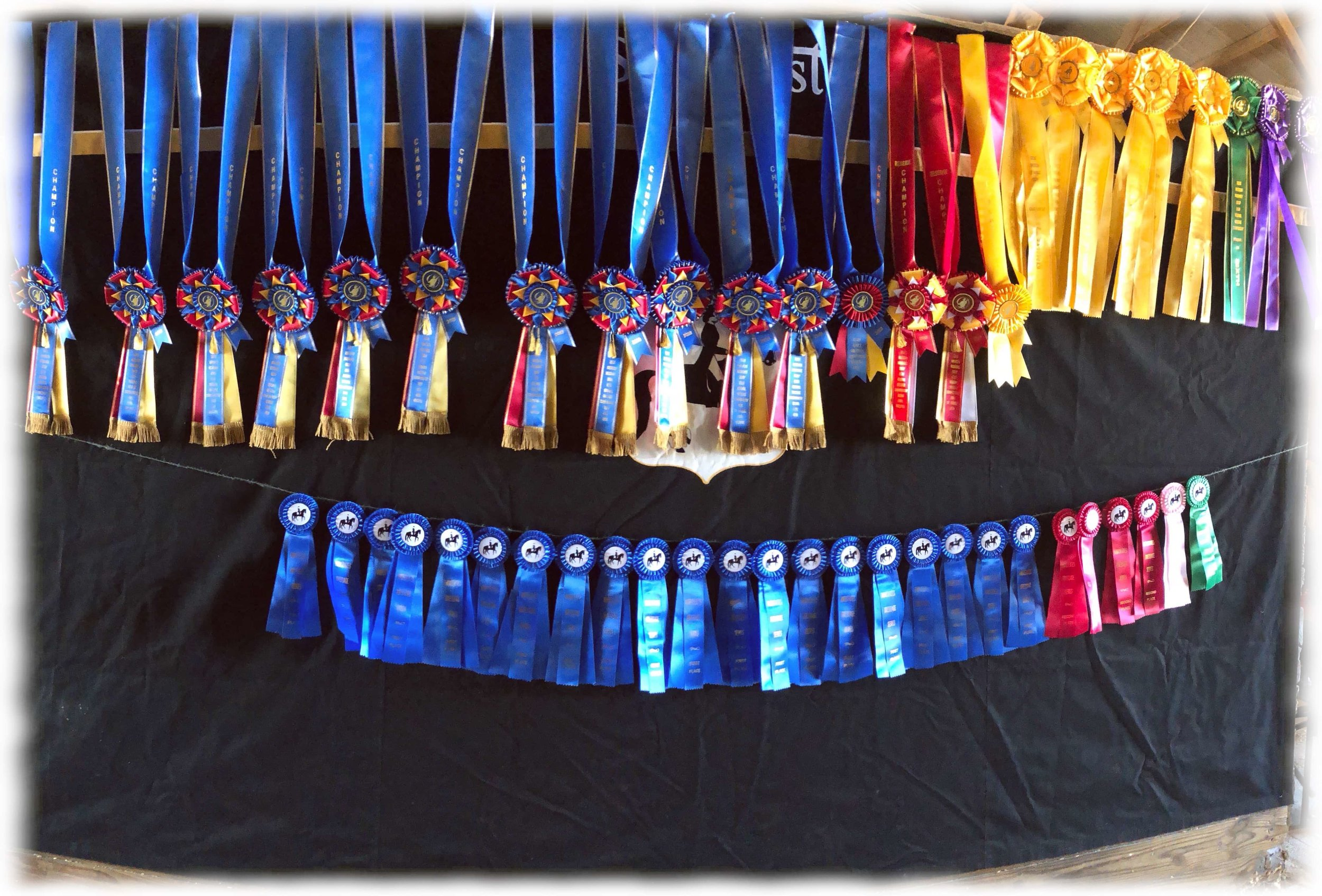 Most of the awards won by StarWest at Regionals