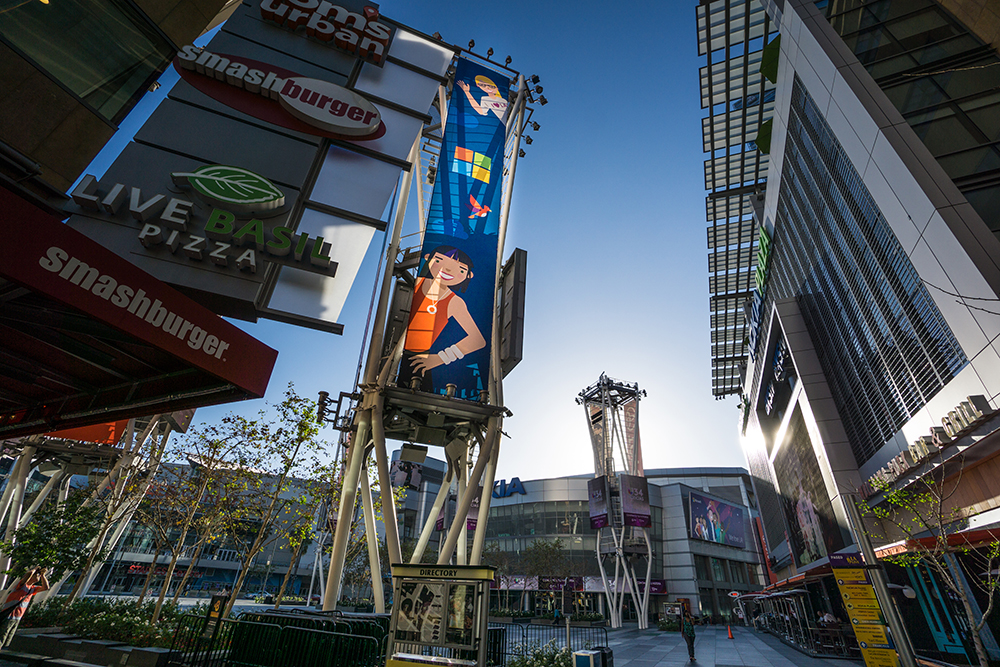 Tall Banner. - Photo by Lou Zumek