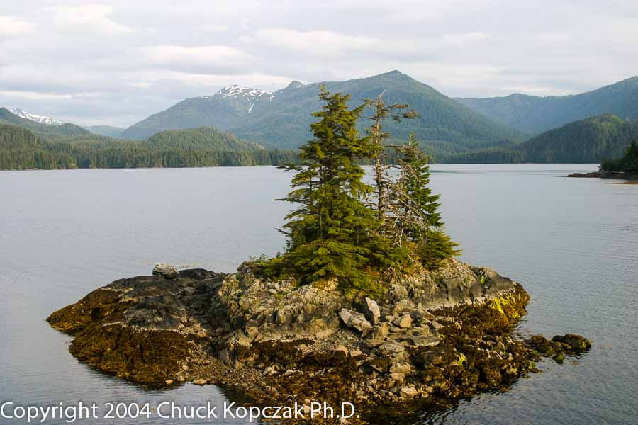 Thimbleberry Bay, Sitka, Alaska