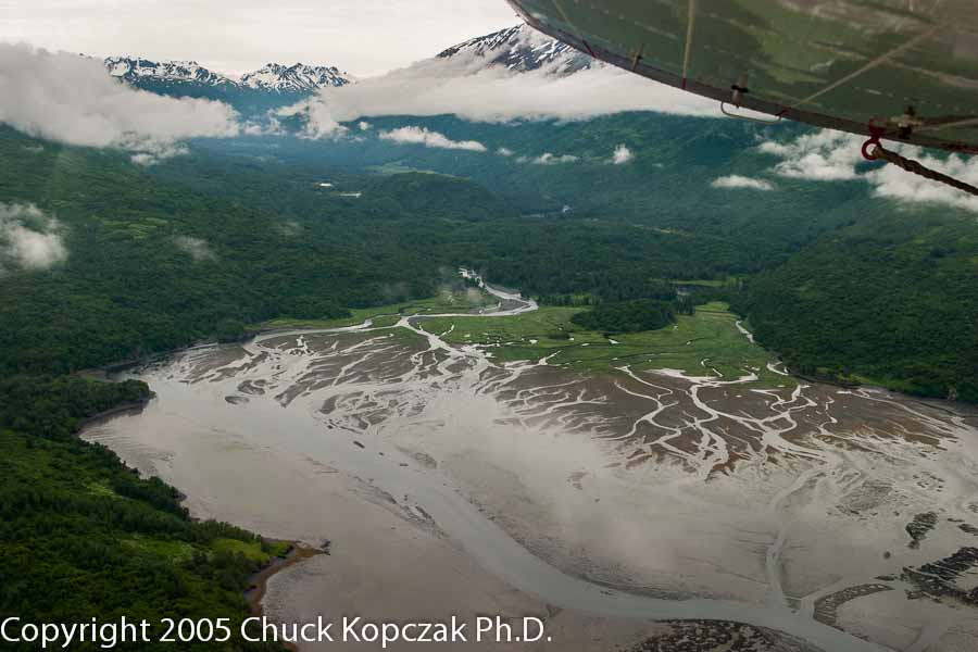 Low tide, Zachar River, Kodiak, Alaska