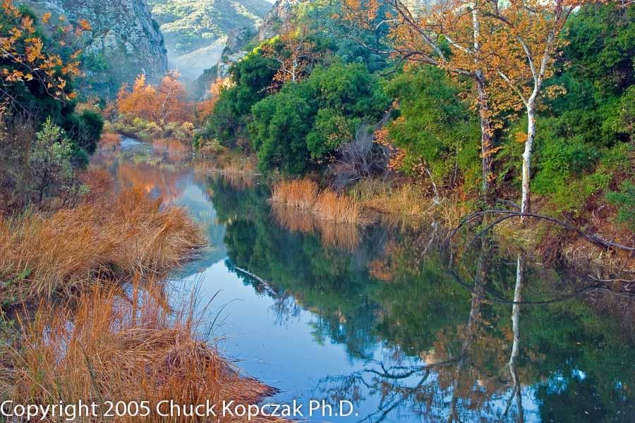 Malibu Creek in Malibu Creek State Park in the Santa Monica Mountains.