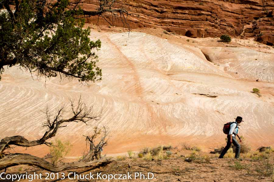 2013-07-05 sandstone-tree-people-900px.jpg